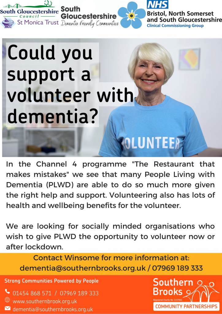 PLWD Volunteer Poster for Orgs
